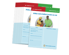 ECEB Parent Guides, African graphics